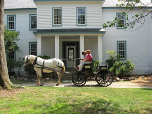Horse and Carriage at Locust Grove